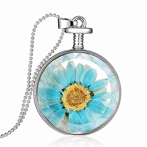 Transparent Real Locket Bling Blue Dried Flower Necklace Pendant Sweater Chain ()