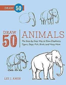 Draw 50 Animals The Step By Step Way To Draw Elephants Tigers