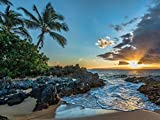 Canvas Prints - Maui Sunset, Hawaii Oil Painting On Canvas Modern Wall Art Pictures For Home Decoration Wooden Framed (16X20 Inch, Framed)