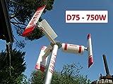 D75 - Mini Micro Generatore Eolico domestico ad asse verticale DOMUS 750 Darrieus Savonius 750W