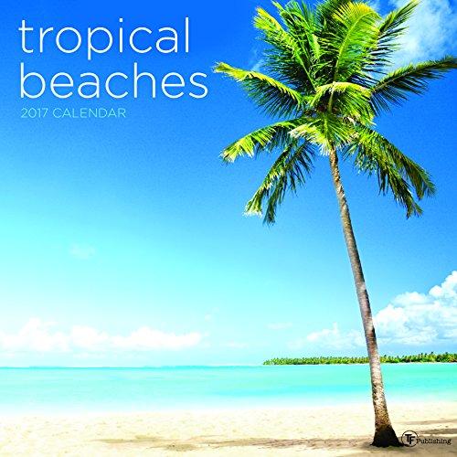 (2017 Tropical Beaches Wall Calendar)