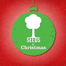 Seeds Family Worship - Seeds Of Christmas EP - Christmas Music with Lyrics Directly from the Bible!