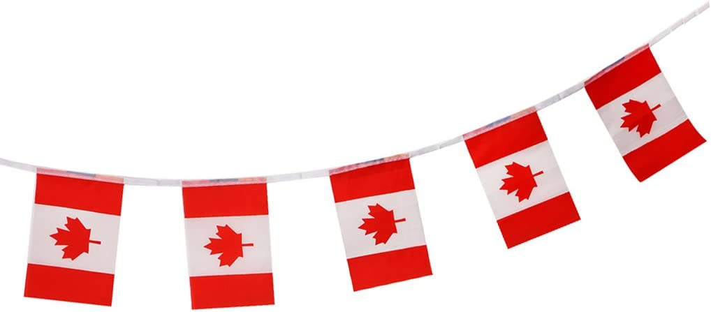sharprepublic Banderas De La Bandera De La Bandera De La Nación De España Banderas para La Decoración del Partido De Las Barras del Deporte - 5.5 Metros (20 pcs Canadá): Amazon.es: Juguetes