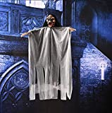 Halloween Voice Control Hanging Ghost Creepy Haunted House Props Light up Eyes Glowing Skull Devil Horror-(15,7) x20inch-Purple/White/Black (Black)