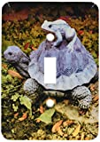 Best 3dRose Garden Gifts - 3dRose lsp 165299 1 A garden turtle statue Review