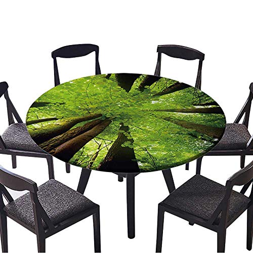 - Modern Table Circle Cloth Beech Canopy Indoor or Outdoor Parties 40
