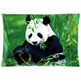 Custom Popular Cute Panda Pillowcase Standard Size Design Cotton Pillow Case one side 20x30