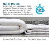 Gilden Tree Premium Bath Towels 2 Pc Set
