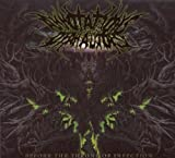 Before the Throne of Infection by Annotations of an Autopsy