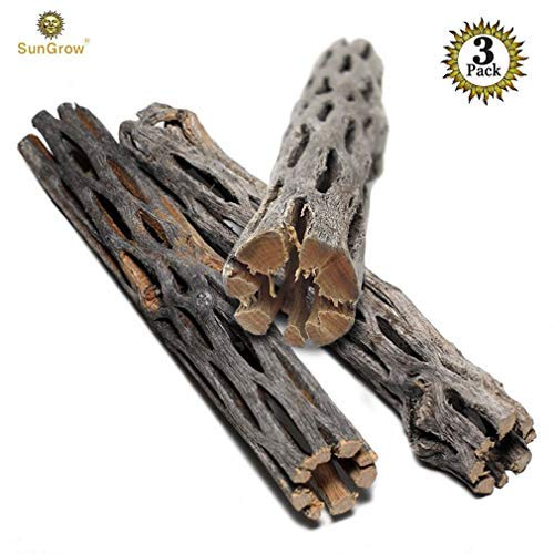 SunGrow Natural Cholla Wood, 3 Pieces, 5 inches Long: Aquarium Decoration and Chew Toys for Small Pets from SunGrow