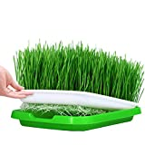 Seed Sprouter Trays, RAVPump 5 Pcs Soil-Free Seedling Germination Tray Double Layer Kitchen Crop Nursery Hydroponics Basket
