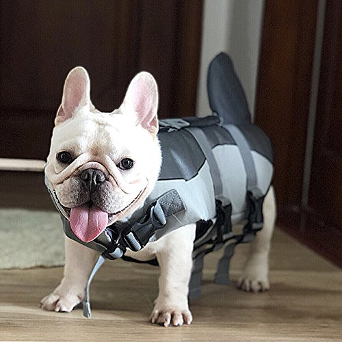JUNBO SHARK & CLOWNFISH SHAPED DOG LIFE VEST Review