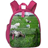 Best Everest Bookbags For Girls - Goat On The Grass Backpack for Teens, Large Review