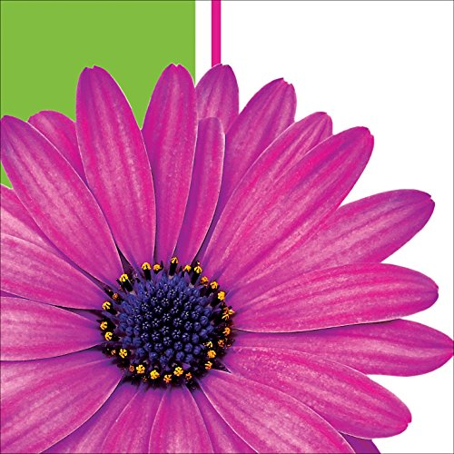 Creative Converting 18 Count Beverage Napkins, Daisy Power