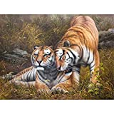 Paintworks Paint by Number Kit for Adults Kids Beginner, DIY Canvas Painting by Numbers for Home Decoration,Wild Animal Tiger,16X20Inch