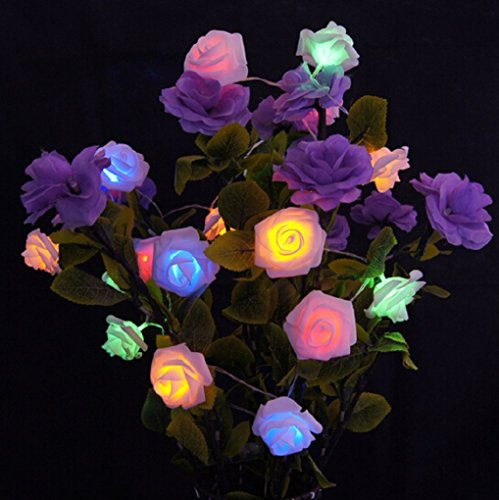 Zking 20 LED Battery Operated String Flower Rose Fairy Light Wedding Room Garden Christmas Decor (colorful) (String Colorful Lights Flower)