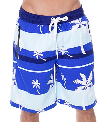 Zenco Men's Alvin Striped Palm Tree Print Swim Trunks Board Shorts, Blue, - Swim Striped Shorts