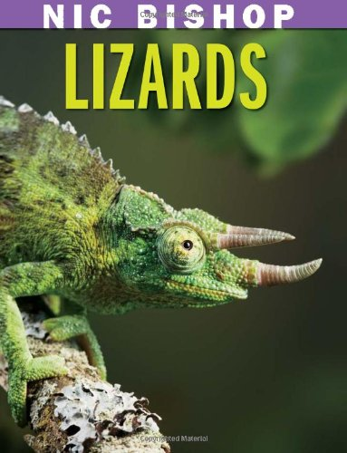 NIC BISHOP LIZARDS