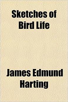 Sketches of Bird Life