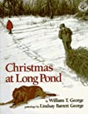 img - for Christmas at Long Pond book / textbook / text book