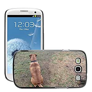 Just Phone Cover Etui Housse Coque de Protection Cover Rigide pour // M00140261 Perro Animal Escudo perrito // Samsung Galaxy S3 S III SIII i9300