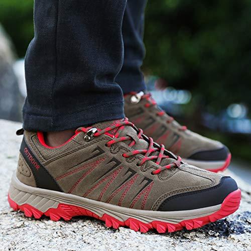 Marron Trekking Randonnée Femme Homme Sneakers Outdoor Chaussures De Basse Sport vaqwUyzXB