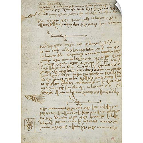 - Leonardo da Vinci Wall Peel Wall Art Print Entitled Codex on The Flight of Birds, by Leonardo da Vinci, 1505-1506. Royal Library, Turin 22