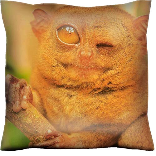 MSD Handmade 16x16 Throw Pillow case Polyester Pillowcase Decorative Pillow Covers Sofa Bed Couch Tarsier Sitting on a Tree Bohol Island Philippines Southeast Asia Image 36731383 Custom