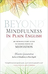 Beyond Mindfulness in Plain English: An Introductory guide to Deeper States of Meditation by Bhante Henepola Gunaratana (2009-09-08)