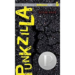 Punkzilla Audiobook