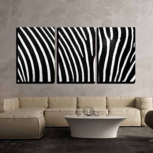 wall26 - 3 Piece Canvas Wall Art - Black and white texture of zebra skin - Modern Home Decor Stretched and Framed Ready to Hang - 16