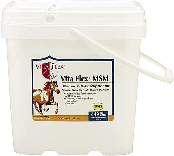 Best MSM Supplements for horses - Vitaflex