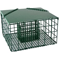 SONGBIRD ESSENTIALS SE6000 Squirrel Resistant Suet Palace