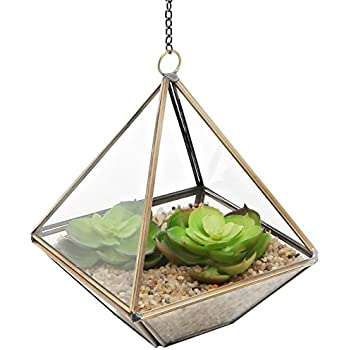 Clear Glass & Brass Tone Metal Faceted Hanging Air Plant Terrarium / Tea Light Candle Holder - MyGift