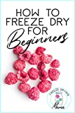 How To Freeze Dry For Beginners