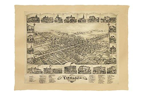 Vineland, New Jersey - Panoramic Map (60x80 Poly Fleece Thick Plush - Vineland Premium