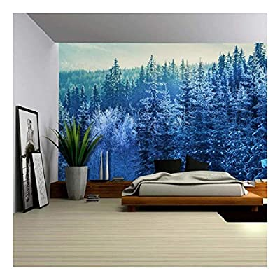 Delightful Print, That's 100% USA Made, an Aerial View of a Winter Time Mountain Wall Mural