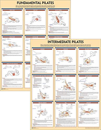 Pilates Anatomy Poster Series