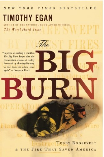 The Big Burn: Teddy Roosevelt and the Fire that Saved (Big Tree State Park)