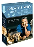 : Cesar's Way Deck: 50 Tips for Training and Understanding Your Dog
