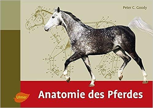 Anatomie des Pferdes: Amazon.de: Peter C. Goody: Bücher