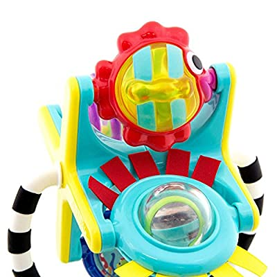 Sassy Fishy Fascination Station 2-in-1 Suction Cup High Chair Toy | Developmental Tray Toy for Early Learning | For Ages 6 Months and Up: Home Improvement