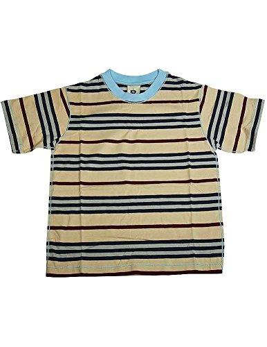 Dogwood Clothing - Little Boys Short Sleeve Striped Tee Shirt, Tan, Multi 11641-5