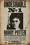 Harry Potter - Movie Poster (Wanted: Undesirable No. 1 - Harry Potter) (Size: 24' x 36') (By POSTER STOP ONLINE)