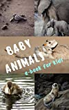 BABY ANIMALS: Book for Kids Toddlers