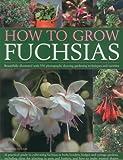 how to grow fuschias in pots