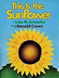 Best California-sunflower-seeds - This Is the Sunflower Review