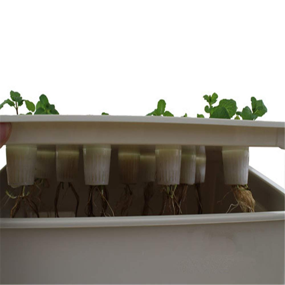 24Holes Hydroponics Grower Kit,Propagation, and Hydroponic Experiment Indoor Outdoor (Gray) by FLOURITHING (Image #5)