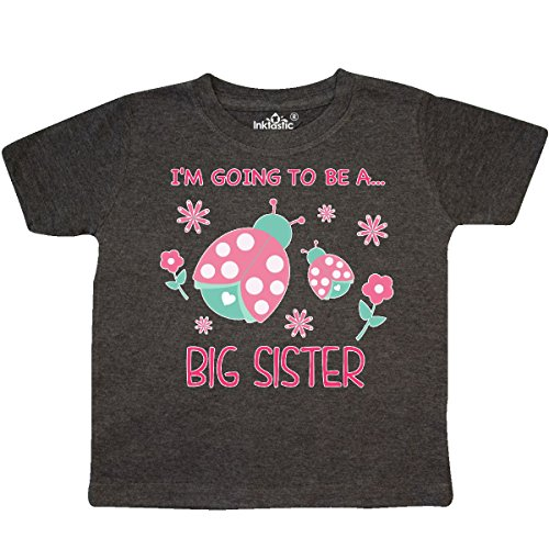 inktastic - I'm Going to be a Big Sister Toddler T-Shirt 3T Retro Heather Smoke