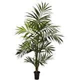 Nearly Natural 5335 Kentia Palm Silk Tree, 7-Feet, Green